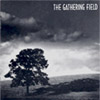 Gathering Field (Gathering Field) CD Cover